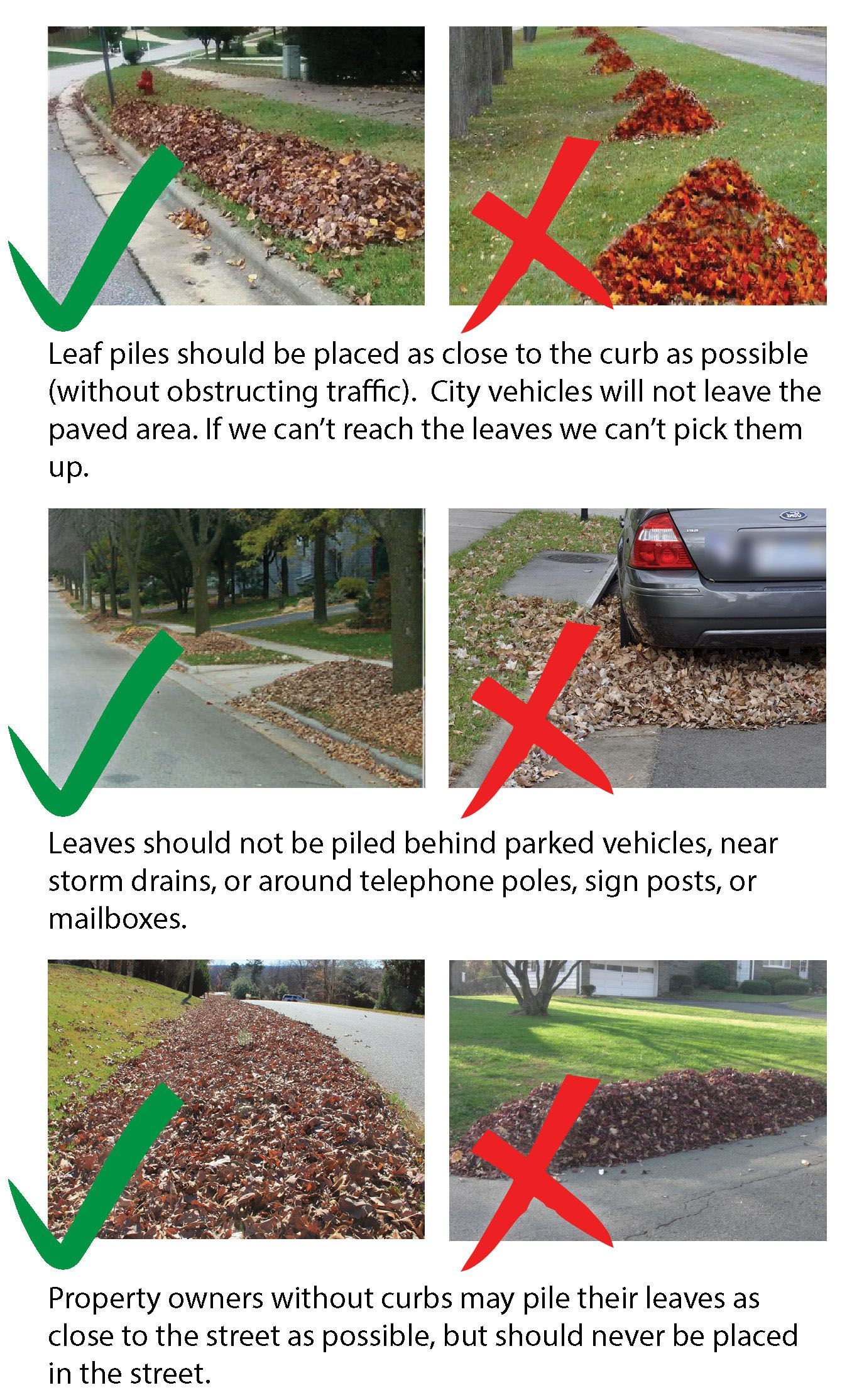 Leaf Pickup Guidelines